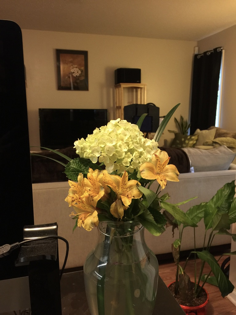 white hydrangea and yellow alstroemeria