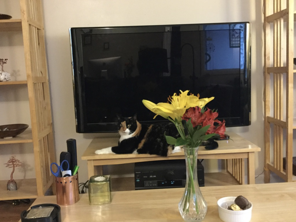calico cat lying behind yellow lilies